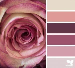 ruzova-paleta-farieb